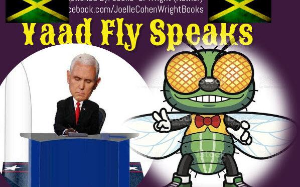 DEBATE YAAD FLY SPEAKS – Jamaicans React (Funny Spoof)